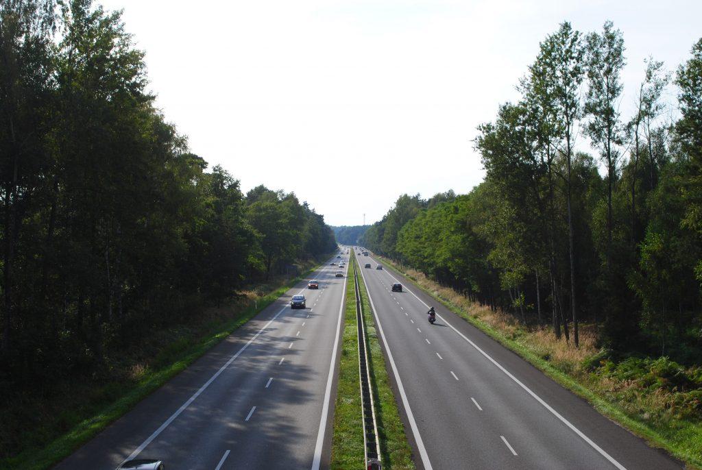 2021-06-18-Fot-WikimediaCommons-Marek-Mróz